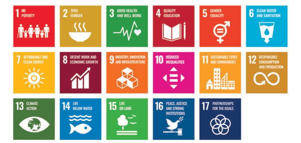 Die 17 Sustainable Development Goals