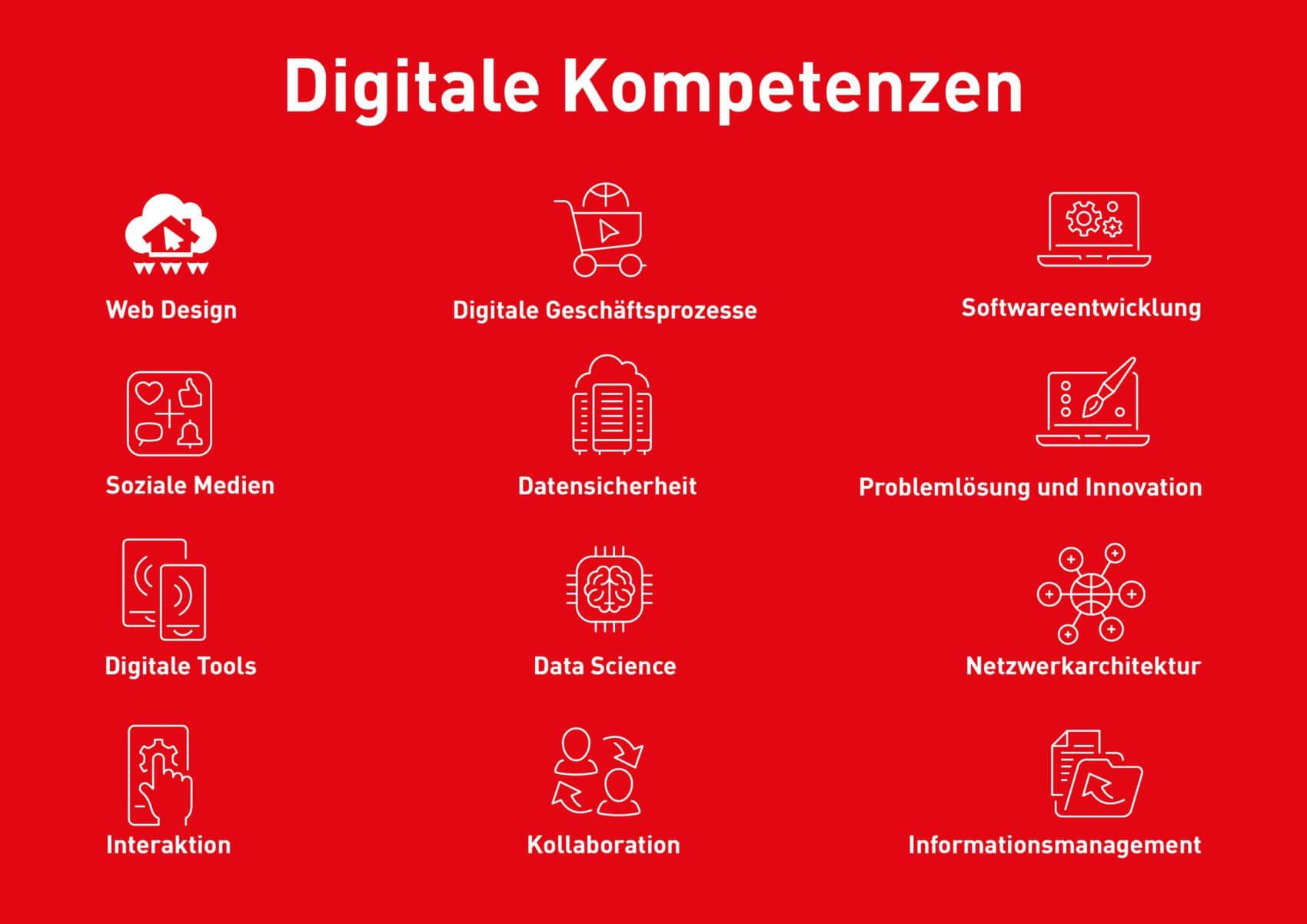 Grafik Digitale Kompetenzen